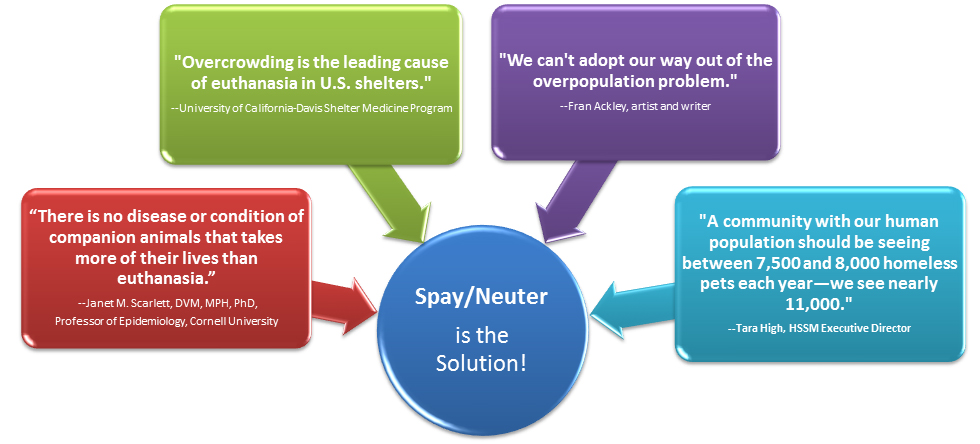 spay-neuter-chart-20131